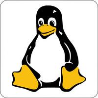 Tasten-Sticker - Pinguin