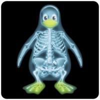 Notebook-Sticker - Röntgen Tux